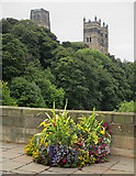 NZ2742 : Durham: the Cathedral from Framwellgate Bridge by John Sutton