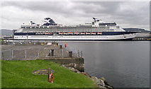 J3576 : The 'Celebrity Infinity' at Belfast by Rossographer
