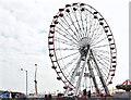 J3171 : Ferris wheel, Balmoral, Belfast - September 2014(1) by Albert Bridge