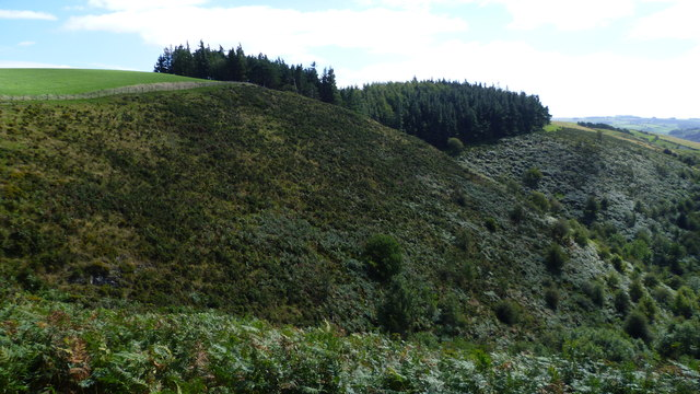 Part of Offa's Dyke Path south of Cwm Sanaham hill in August