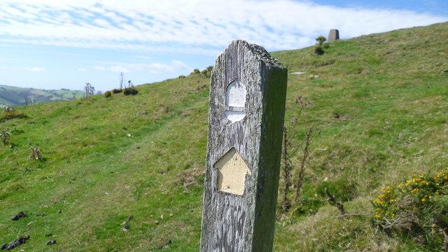 On Offa's Dyke Path below Cwm Sanaham Hill in August