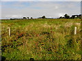 H1786 : Cronalaghey Townland by Kenneth  Allen