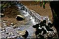 NZ8612 : Small fall on East Row Beck by Pauline E