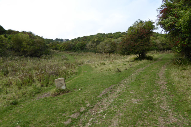 Worth Matravers Walk 11