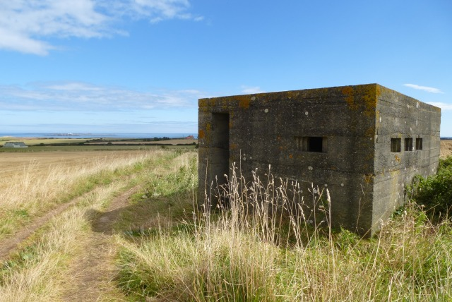 Pillbox north-west of New Shoreston