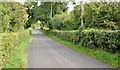 J1766 : The Meeting House Road near Ballinderry (September 2014) by Albert Bridge