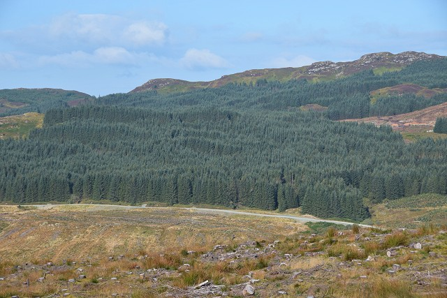 West Loch Awe Timber Haul Route in Inverliever Forest