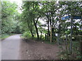 TQ3859 : Cycle Route 21 meets Scotshall Lane by David Anstiss