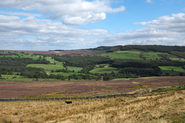 Moorland on western side of Bilsdale