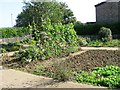 TL0751 : Community Garden on site of demolished garages by Alex McGregor