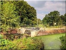 SJ8382 : HEP Scheme and Fish Ladder at Quarry Bank Mill by David Dixon