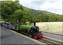 NY1700 : The River Irt locomotive arriving at Dalegarth Station by pam fray