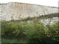 TQ5773 : Chalk workings in the former quarry at Bluewater by Richard Humphrey