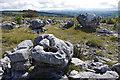 SD5479 : Limestone boulders, Holmepark Fell by Ian Taylor