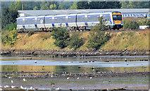 J3480 : Train, Whitehouse, Newtownabbey - September 2014(1) by Albert Bridge