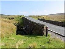 SD7148 : Bridge over a moorland stream by Philip Platt