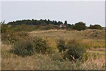 TF7144 : NNR, Holme Dunes by Pauline E