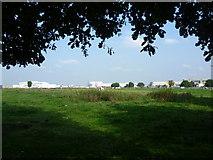 TQ0975 : Horse pasture near Heathrow by Marathon