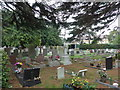 SU4511 : St Mary's Extra Cemetery Southampton (3) by Basher Eyre