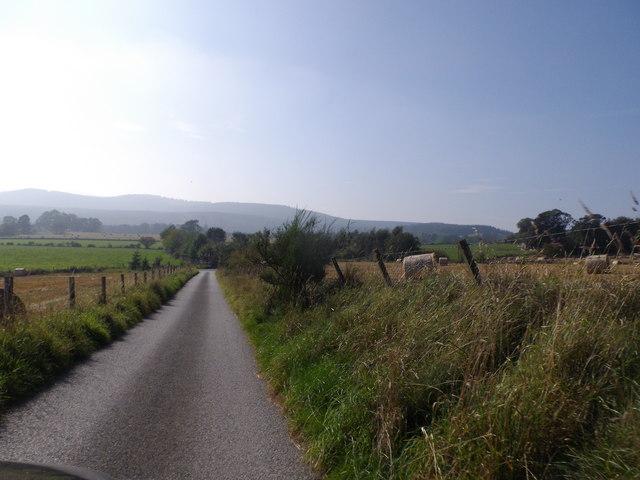 Lane from Balfiddy