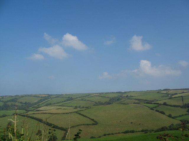 Fields near Combe Martin