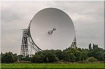 SJ7971 : The Lovell Telescope by Peter McDermott