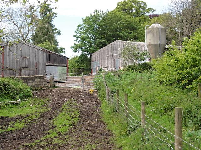 Farmyard near Pynes House