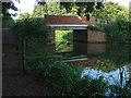 SU9945 : River Wey Navigation bridge by Alan Hunt