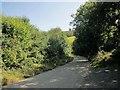 SX2959 : Lane down Seaton valley by Derek Harper