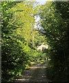SX3059 : West Lodge, Catchfrench by Derek Harper