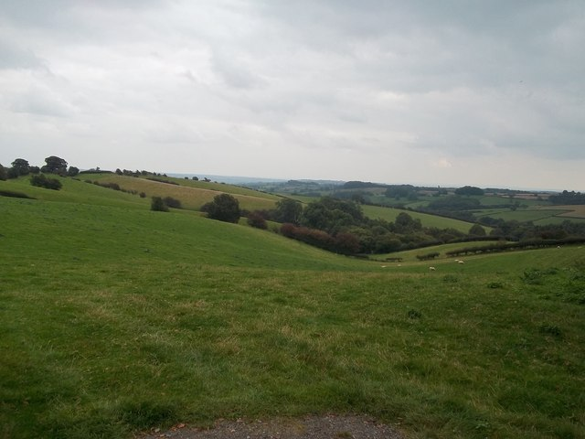 Fields and Woodland near Cross o' the Hands