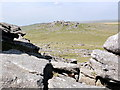 SX5476 : Roos Tor from Great Staple Tor by Tony Atkin