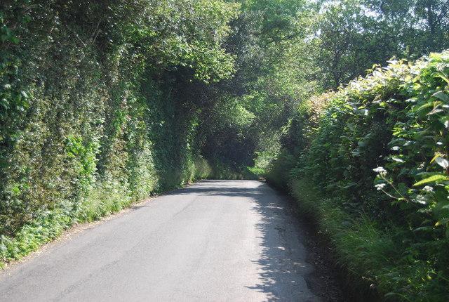 Cornford Lane by N Chadwick