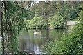 NY9482 : Fisherman, Sweethope Loughs by Mick Garratt