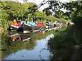 SP8813 : Narrowboats at Bates Boatyard (2) by David Hawgood