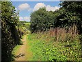 SX3057 : Path, Hessenford by Derek Harper