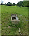 SK7805 : Cattle trough near the site of Sauvey Castle by Mat Fascione