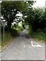 TM2887 : Grove Lane, Denton by Adrian Cable