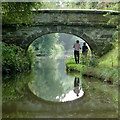 SJ8459 : Deakins Bridge north-east of Scholar Green, Cheshire by Roger  Kidd