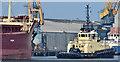 "J3576 : The ""Svitzer Sussex"", Belfast - September 2014(3) by Albert Bridge"