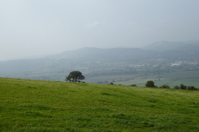 Grassland on the hillside