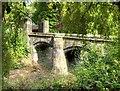 SJ8898 : Bridge at Clayton Hall by David Dixon