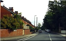 SD3648 : Park Lane in Preesall by Steve Daniels