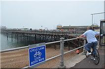 TQ8109 : Watching the work on Hastings Pier by Julian P Guffogg