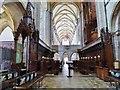 SU8504 : The Choir, Chichester cathedral by Derek Voller