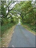 SJ7619 : Along Walkley Bank Lane by Richard Law