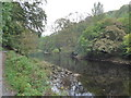SE0755 : Dales Way trek from Bolton Abbey to Pinder Stile (19) by Basher Eyre