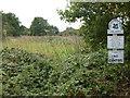 TG1727 : Abel Heath - The National Trust by Richard Humphrey