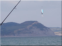 SY3491 : Lyme Regis: fishing line and a Golden Cap view by Chris Downer