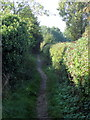TL0752 : Footpath to Putnoe by Philip Jeffrey